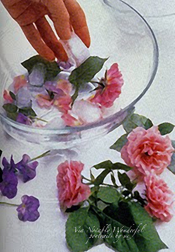freezing-roses-in-ice