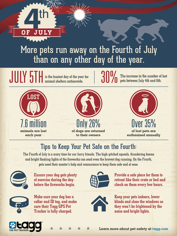 4th-of-july-pets