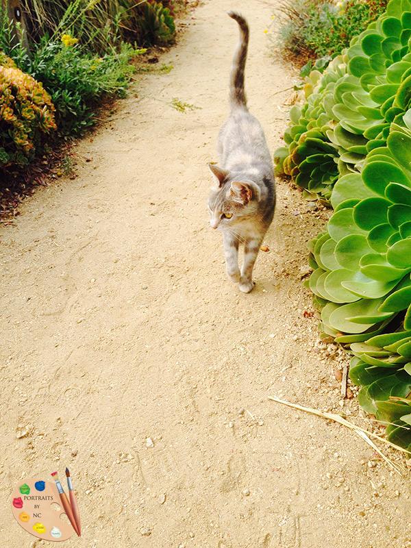 gardeners-cat