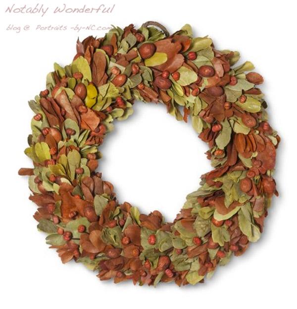 Smith & Hawken Putka Dried Fall Wreath