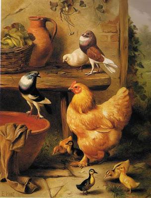 Chickenducklings_EHunt.jpg