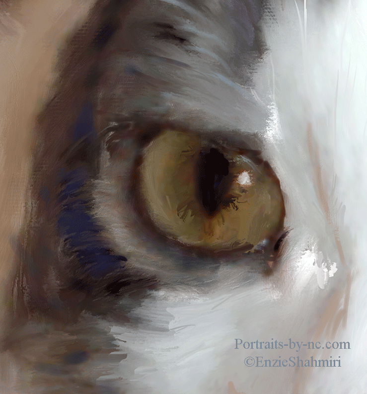 eye-detail.png