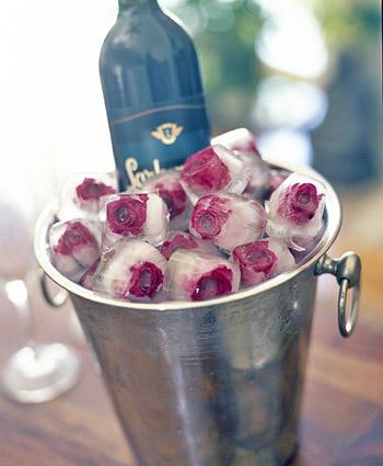 [rose_ice_cube_1.jpg]