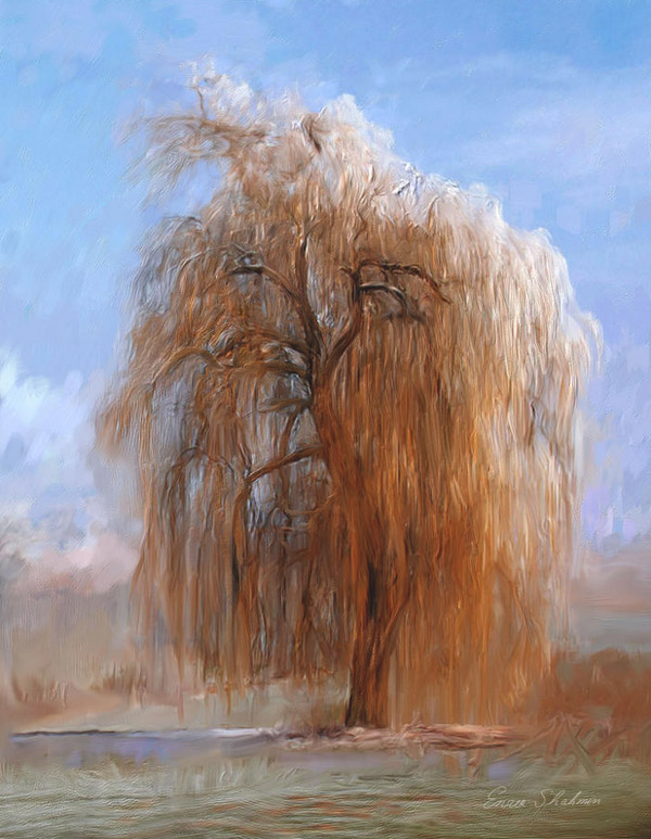 The Lone Willow Tree by Enzie Shahmiri