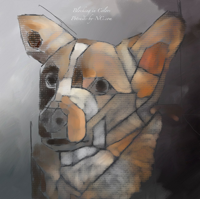 rough-draft-corgi-portrait-by-nc.jpg