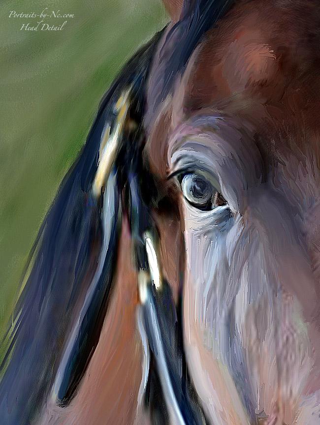 head-detail-horse-portrait.jpg