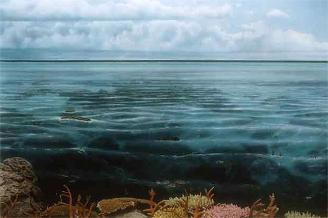 Ocean Mural viawww.davidrockstudios.com