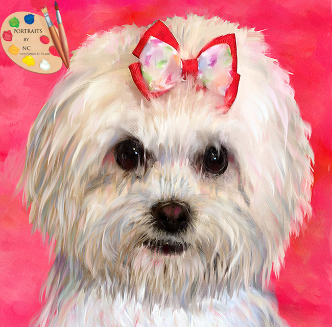 Order your very own pet portrait