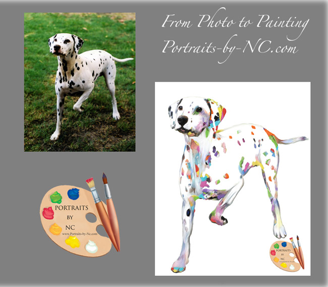 dalmatian-portrait-before-after.jpg