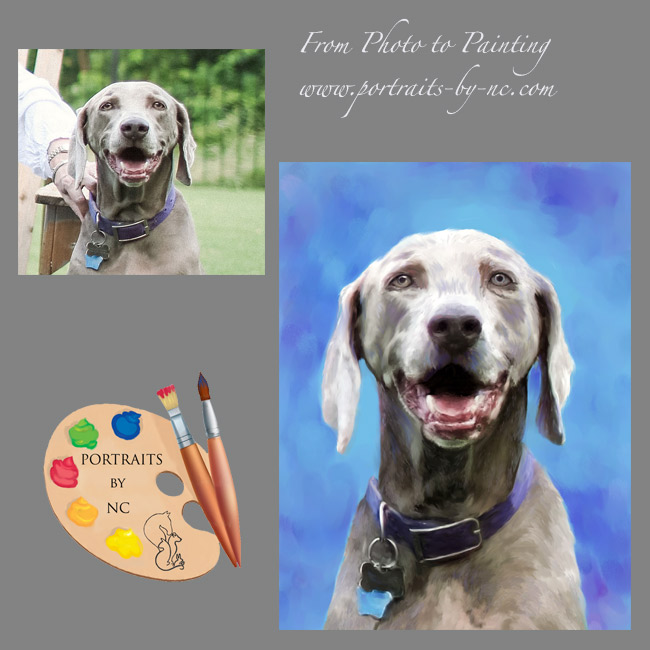 weimaraner-from-photo-to-painting.png