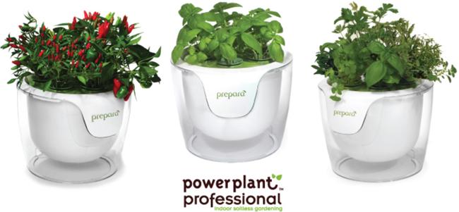 Prepare-Power-Planter.png