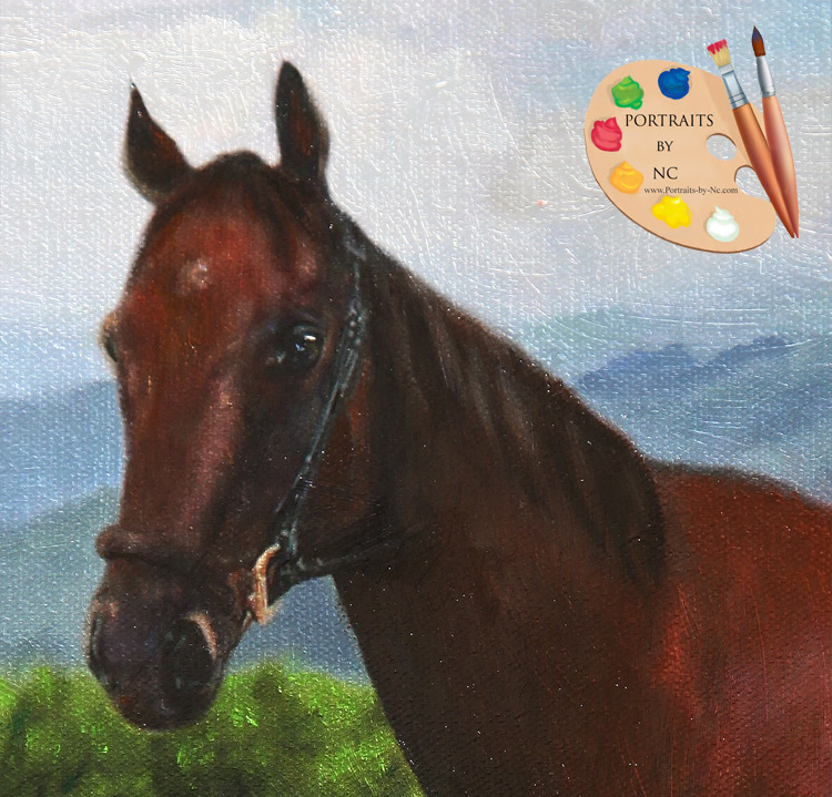 horse-portrait-head-detail.jpg
