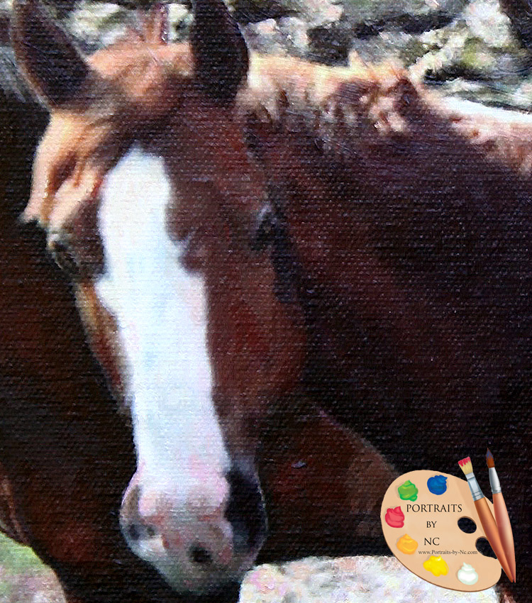 Light Brown Horse Detail