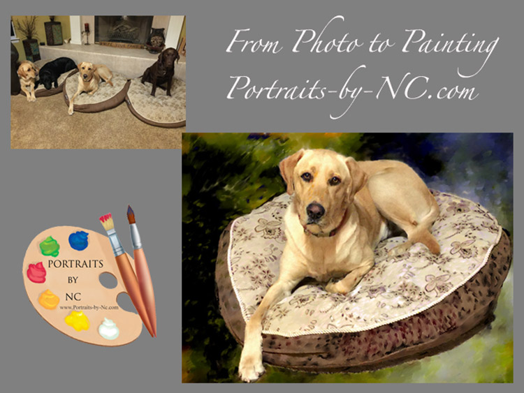 labrador-before-after-portraits-by-nc.jpg