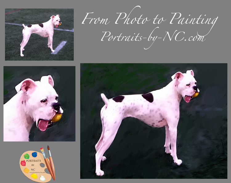 boxer-dog-paintings.jpg