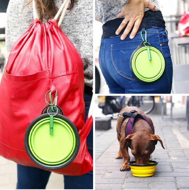 good-dog-collapsible-pet-bowls.jpg