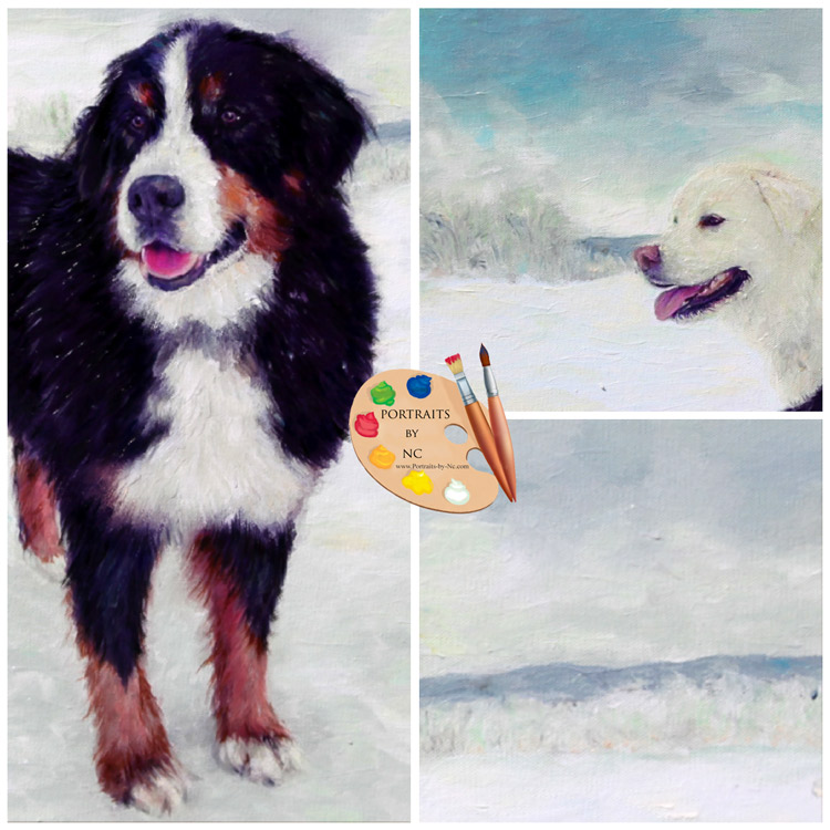 bernese-mountain-dog-portraits-by-nc.jpg