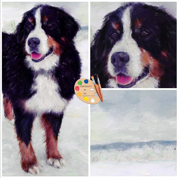 bernese-mountain-dog-pet-portrait.jpg