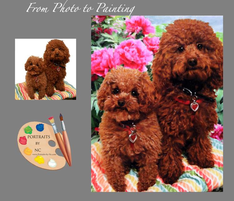 before-after-poodle-portrait.jpg