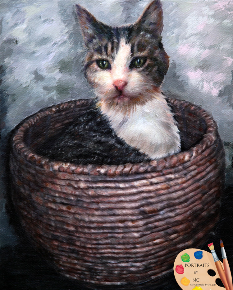 cat-in-basket-portraits-by-nc.jpg