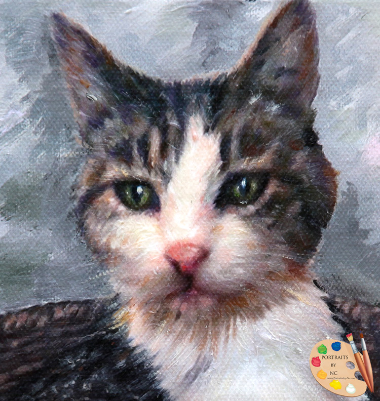 cat-head-detail-portraits-by-nc.jpg