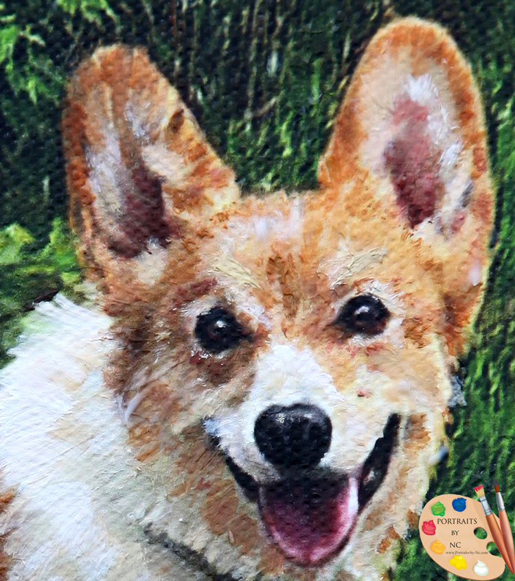 corgi-head-portraits-by-nc.jpg