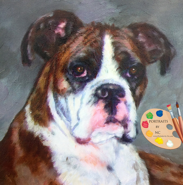 boxer-custom-pet-portraits-by-nc.jpg