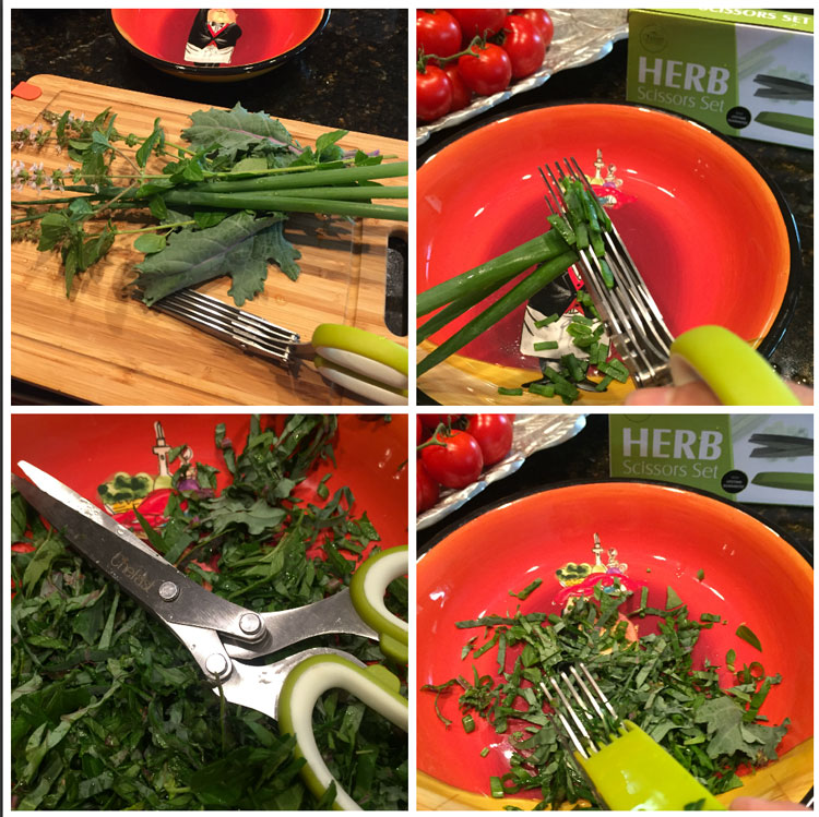 cutting-herbs-with-chefast.jpg