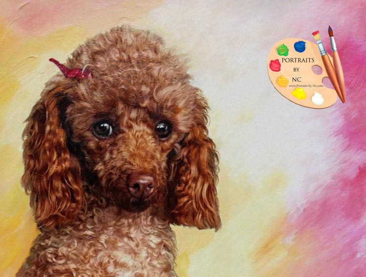 Poodle Head Detail - Portraits by NC.com