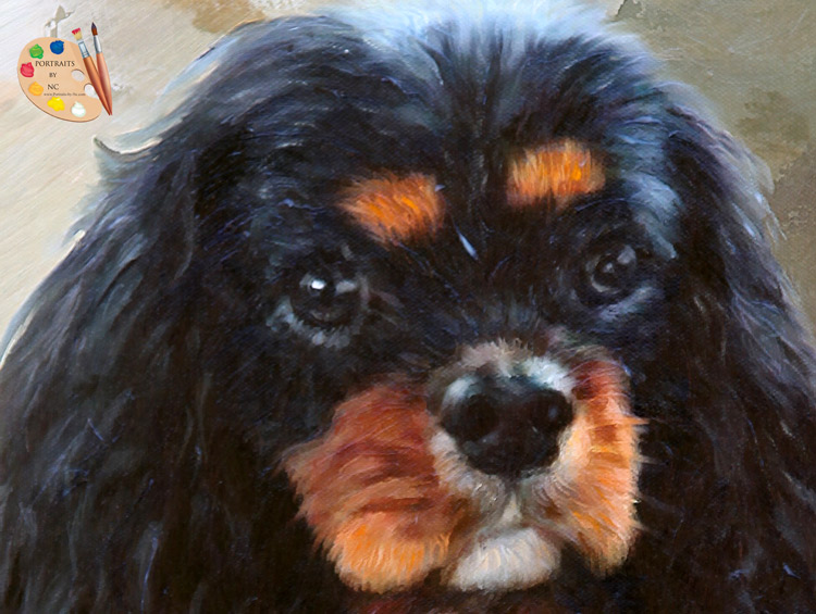 Cavalier King Charles Spaniel Painting by Portraits-by-NC