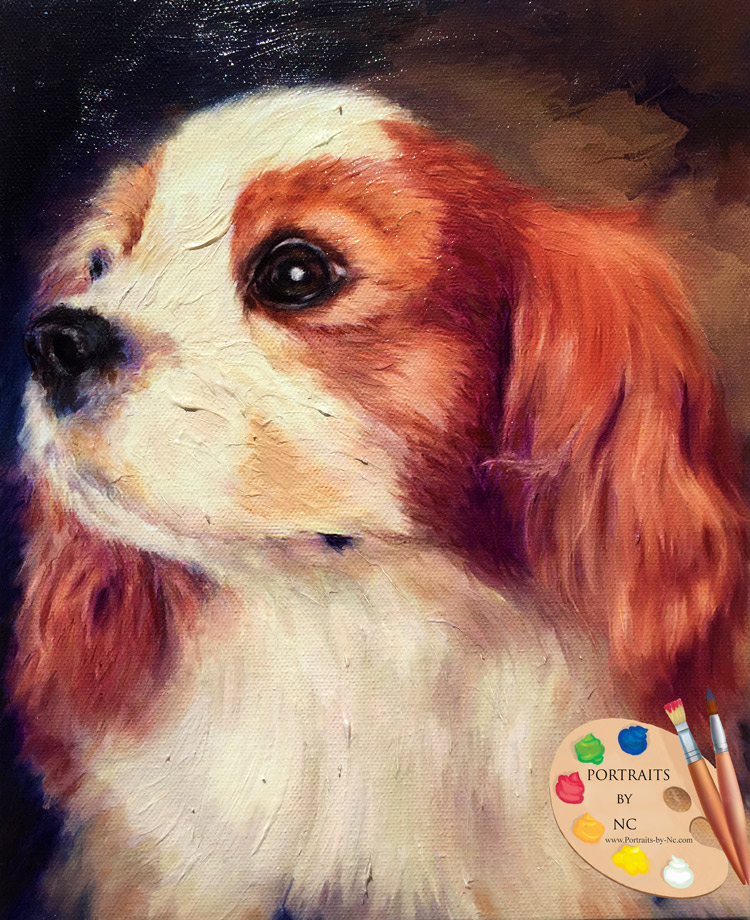 Cavalier King Charles Pet Portrait - Portraits-by-NC