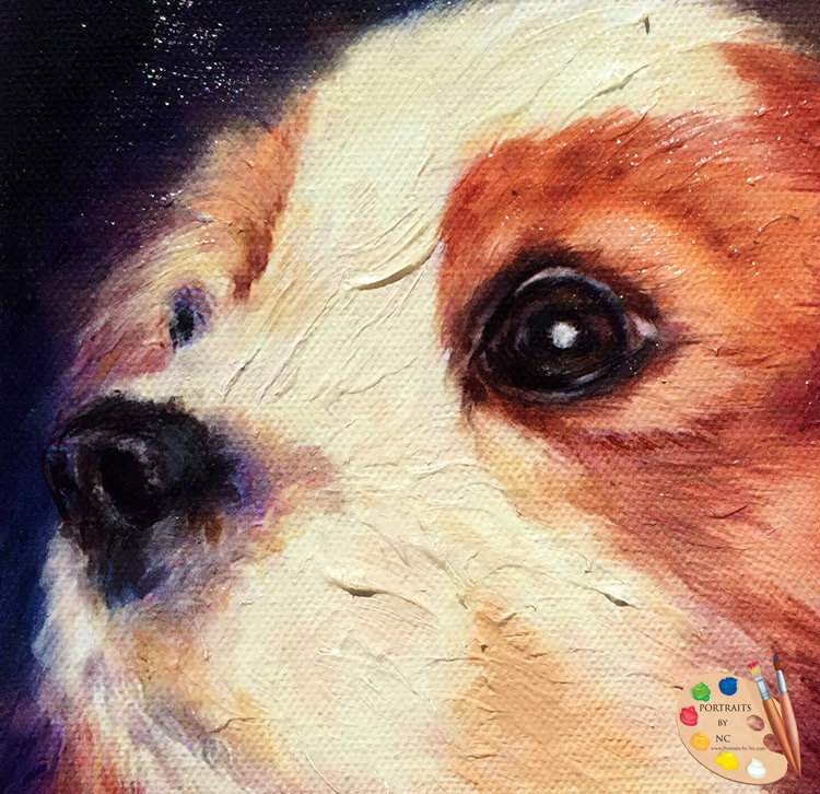 Portraits of Cavalier King Charles Spaniels by Portraits by NC
