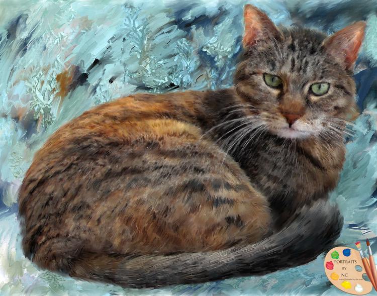 Cat Portrait - Portraits-by-Nc.com