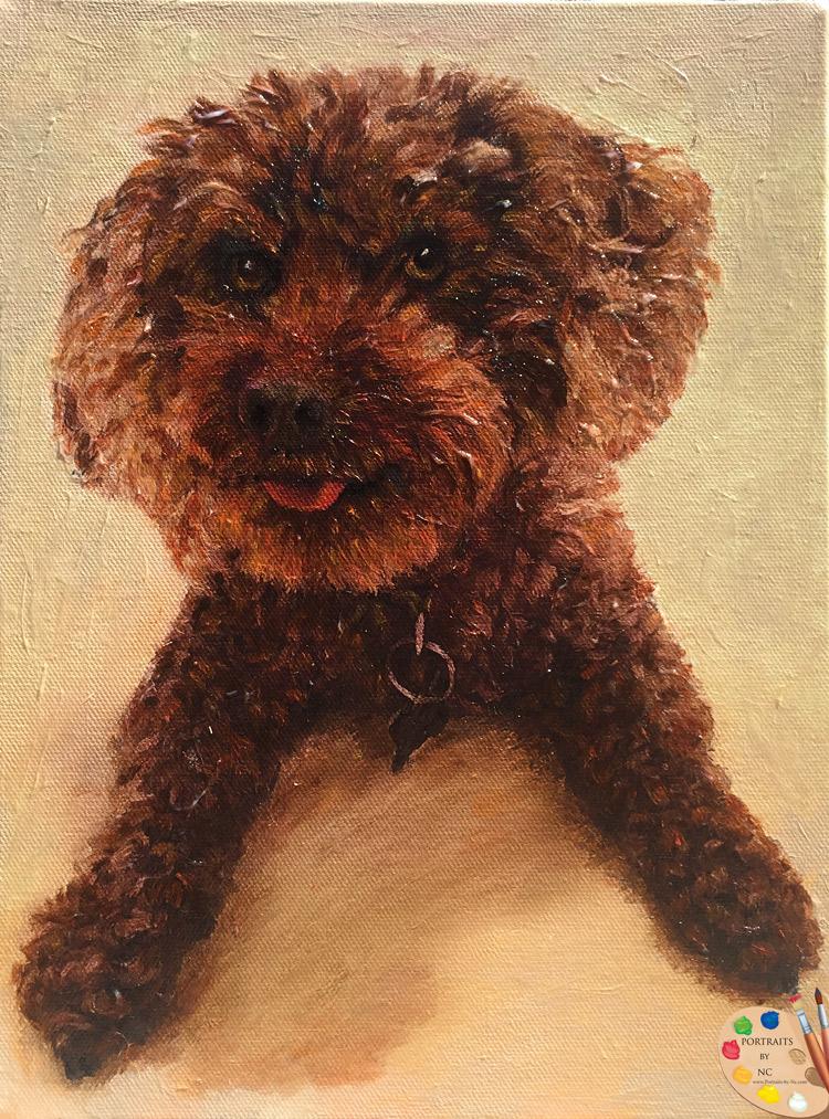 poodle-portrait.jpg