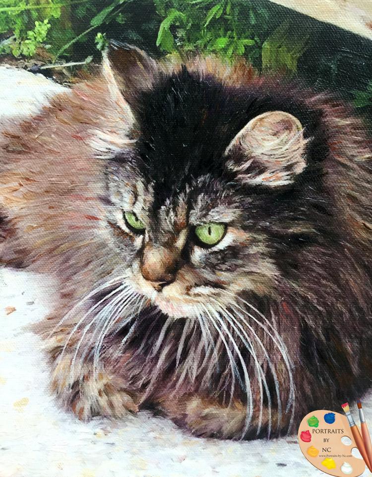cat-portrait-detail