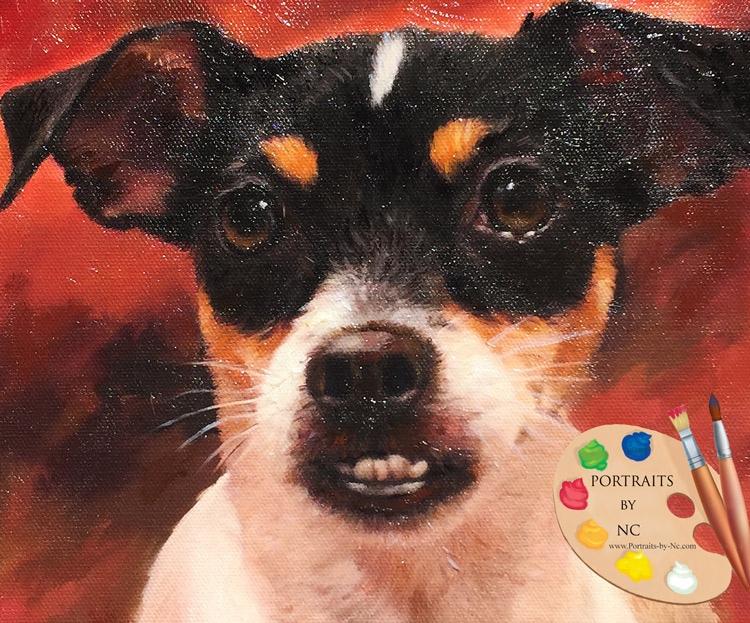 rat terrier head