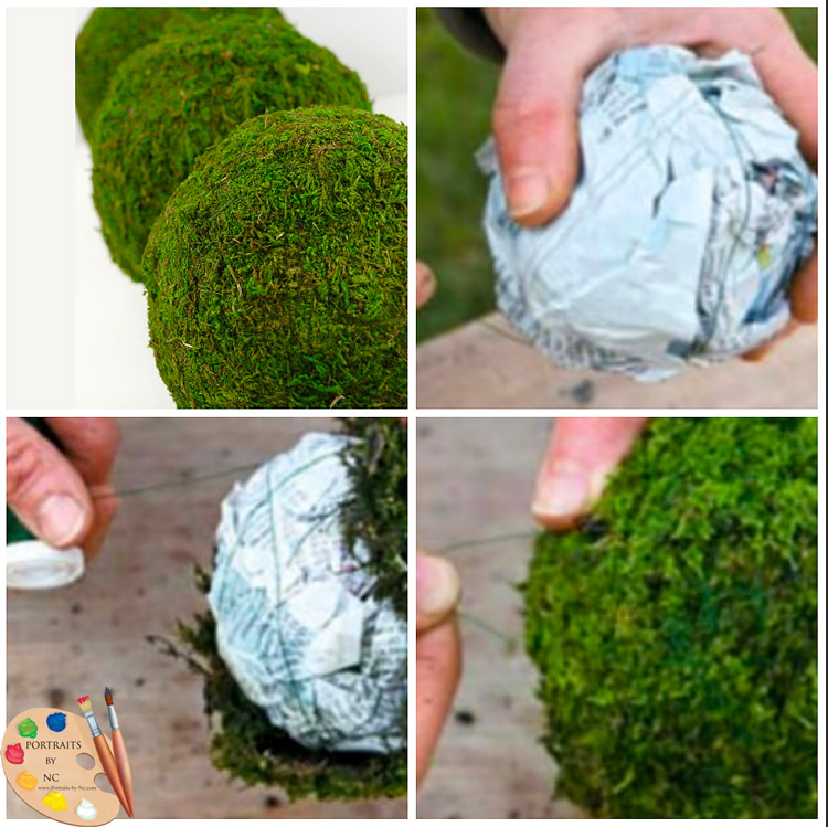 Easy way to make Moss Balls