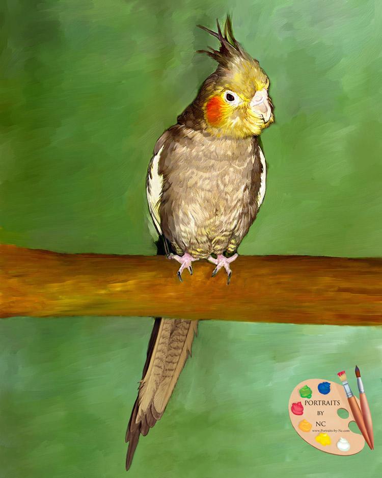 Cockatiel painting