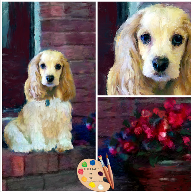 cocker spaniel collage