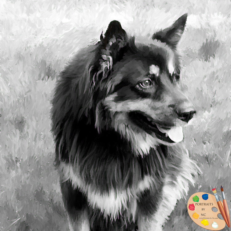 german shepherd painting