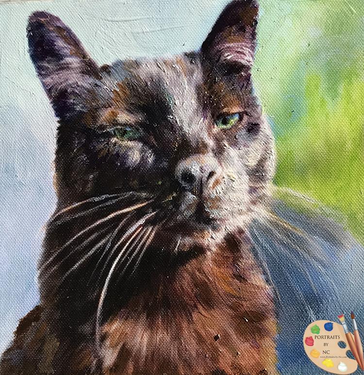 Small Cat Portrait
