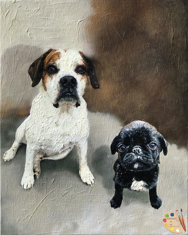 Two Dogs Pet Portraits by NC