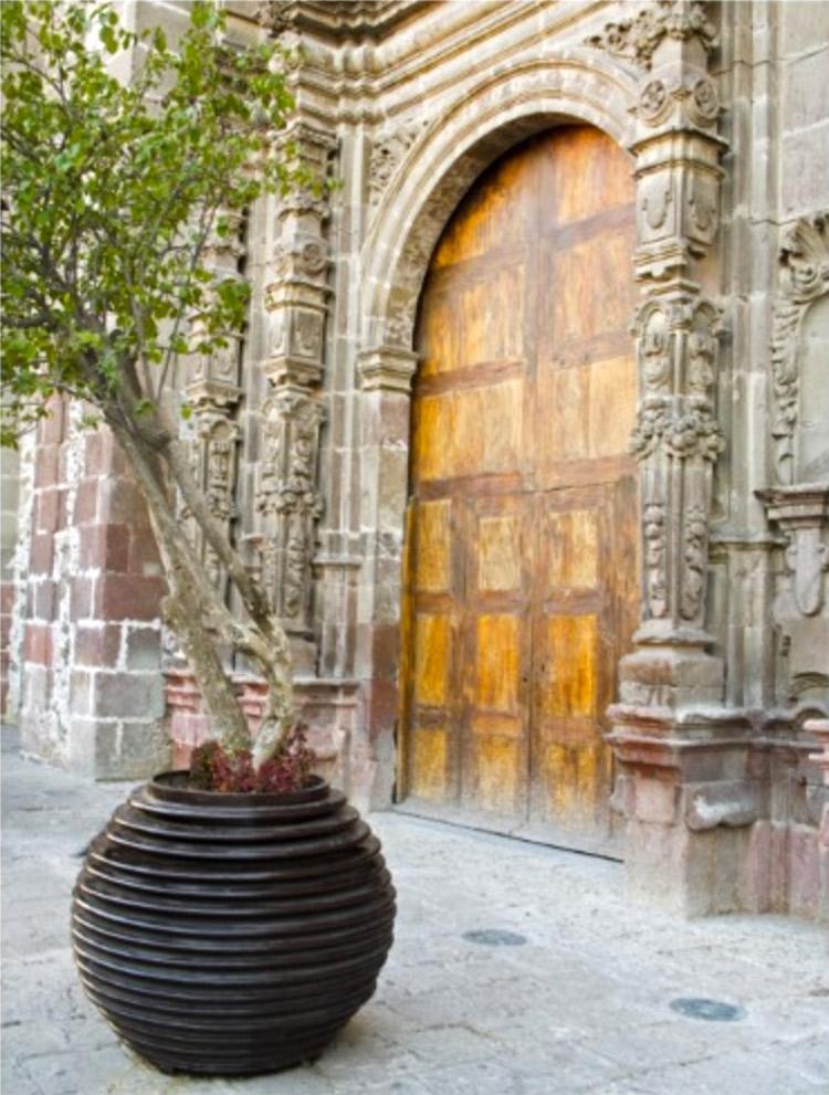 North America, Mexico, Guanajuato state, San 3 Postcard by DanitaDelimont