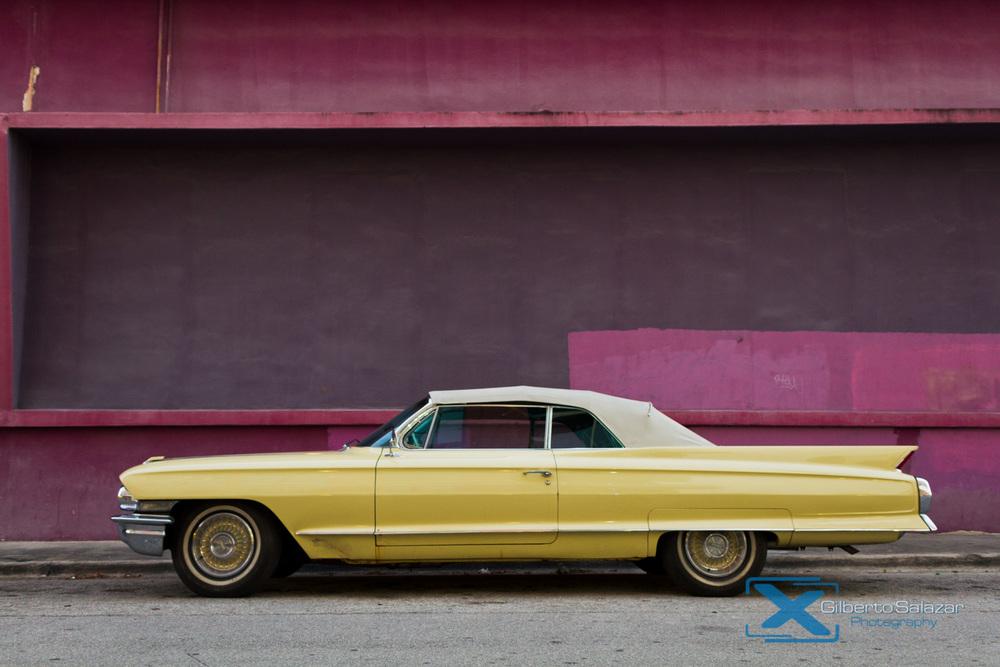 Still Life by Gilberto Salazar-1.jpg