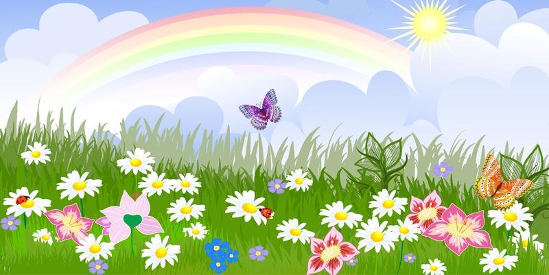 Rainbow & Butterflies.jpg