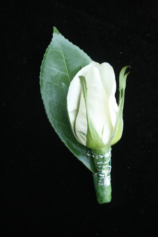 buttonhole6.jpg