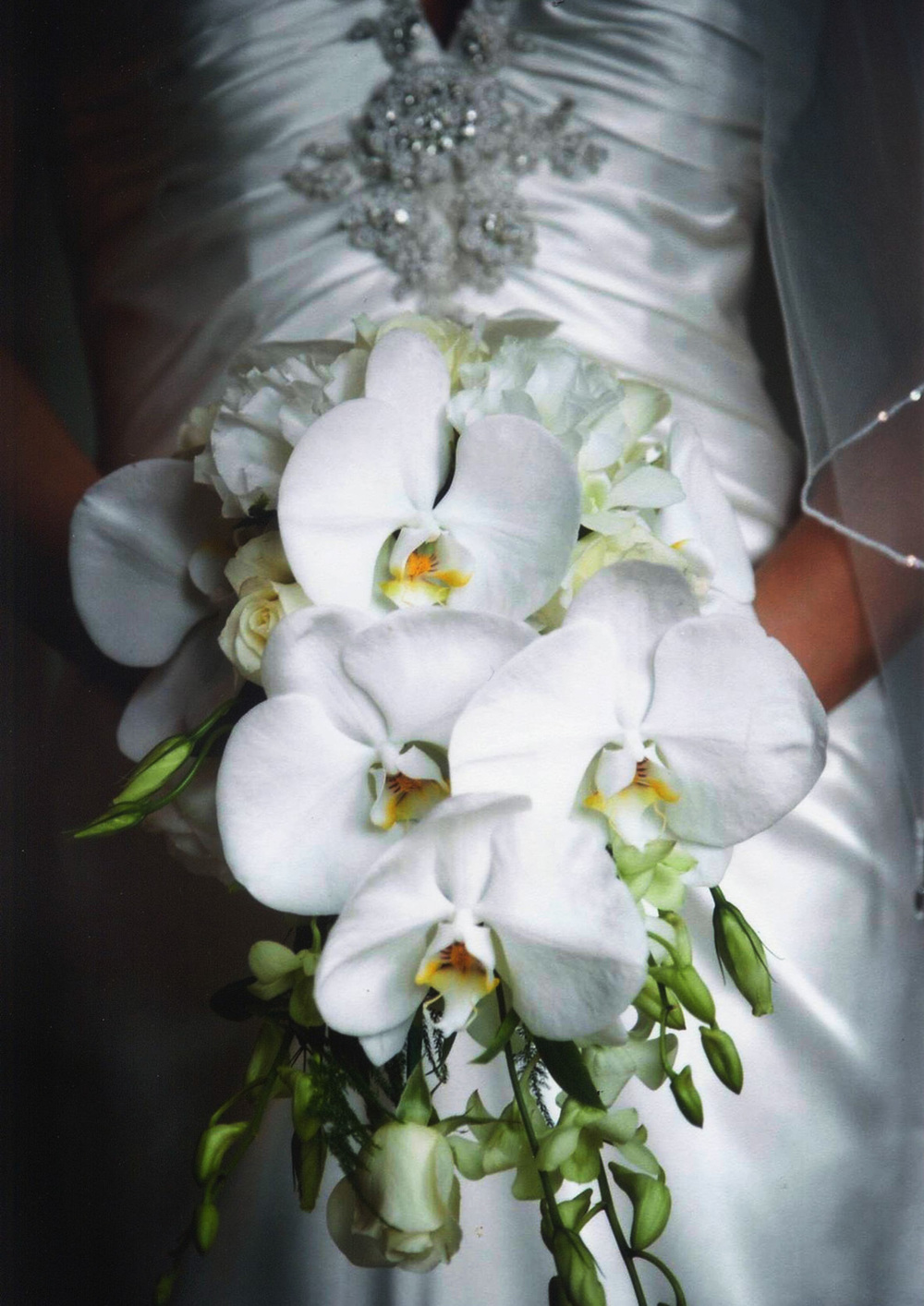 Flower_Scan.jpg
