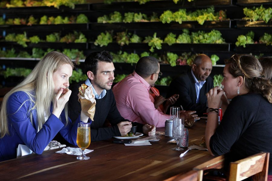 Dining-experience-at-the-Moyo-Restaurant-in-Cape-Town.jpg