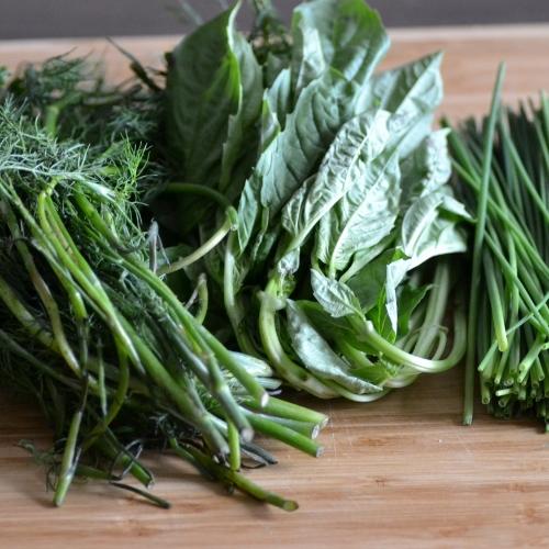 Fresh_Herbs.jpg
