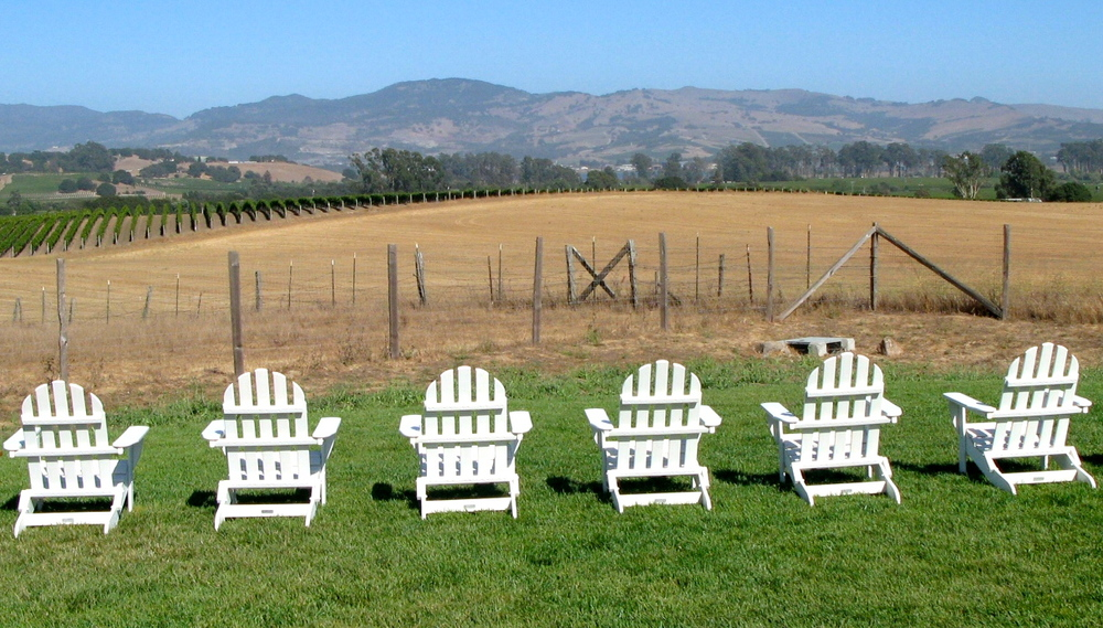 Adirondack chairs overlooking Napa's vineyards at The Carneros Inn.  Photo by Rebecca Garland.